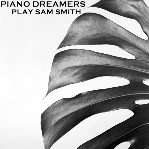 Piano Dreamers Perform Sam Smith (Instrumental)