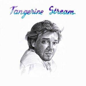 Private Tapes - DJ Kaos presents Tangerine Stream