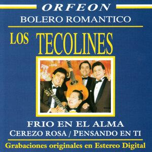 Los Tecolines - Bolero Romantico