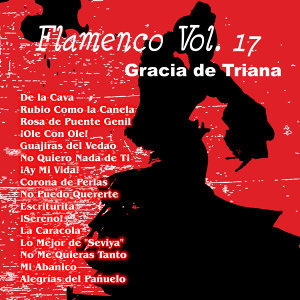 Flamenco Vol. 17