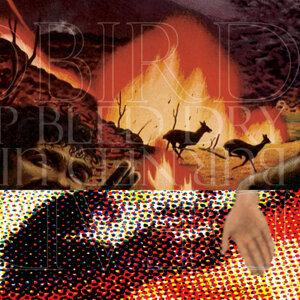 Deadbird / Burned Up Bled Dry - Split