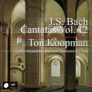 J.S. Bach: Cantatas Vol. 12