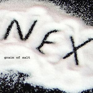 Grain of Salt
