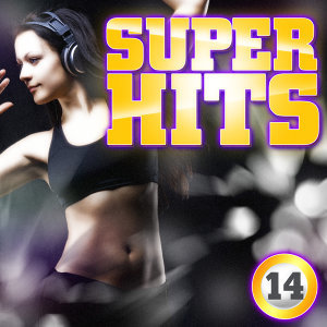 Super Hits Vol. 14