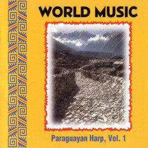 Paraguayan Harp Vol. 1