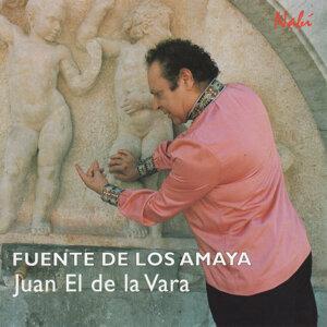 Fuente de los Amaya