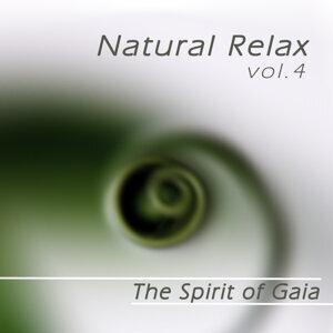 Natural Relax, Vol.4
