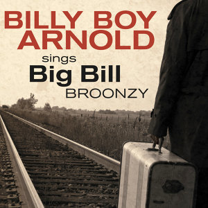 Billy Boy Arnold Sings: Big Bill Broonzy