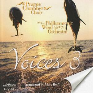 Voices 3