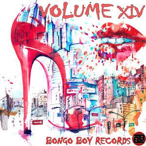 Bongo Boy Records VOLUME XIV