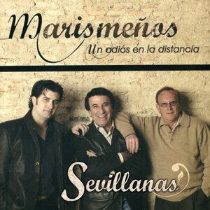 Sevillanas un Adiós en la Distancia