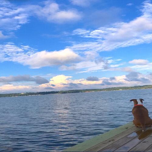 LakeSide Dreams