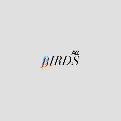 THE BIRDS EP
