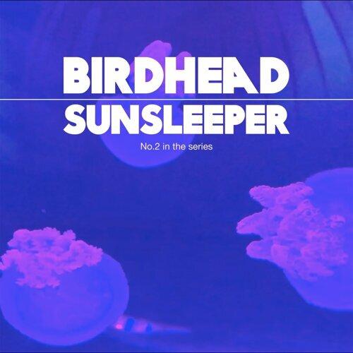 Sunsleeper
