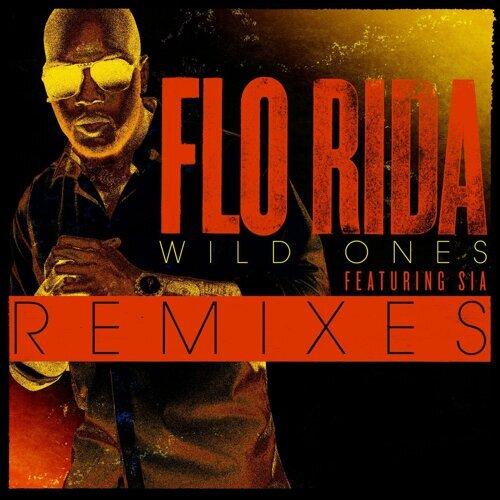 Wild Ones (feat. Sia) - Basto Remix
