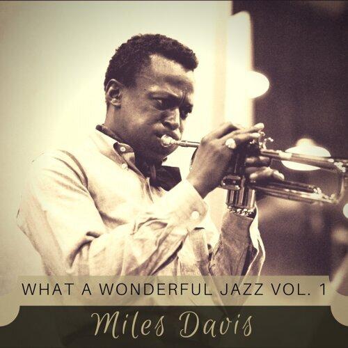 What a wonderful Jazz Vol. 1