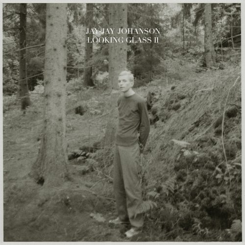 Looking Glass, Vol. 2 - Bury the Hatchet Bonus Album