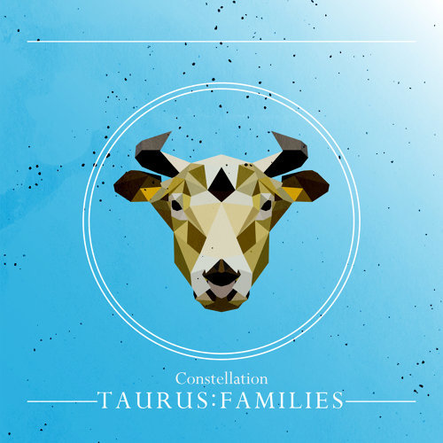 星座系列 -【金牛:家人】Vol.4:Constellation -【TAURUS:FAMILIES】Vol.4