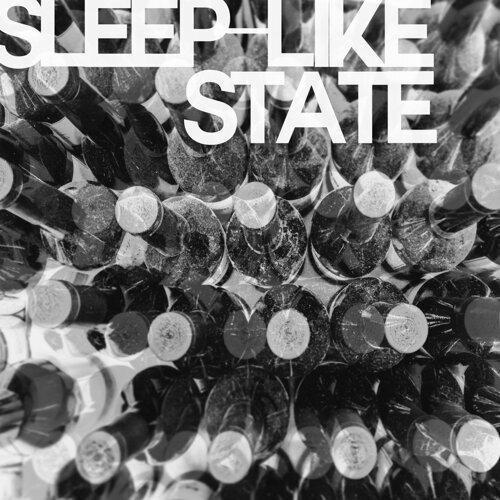 sleep-like state