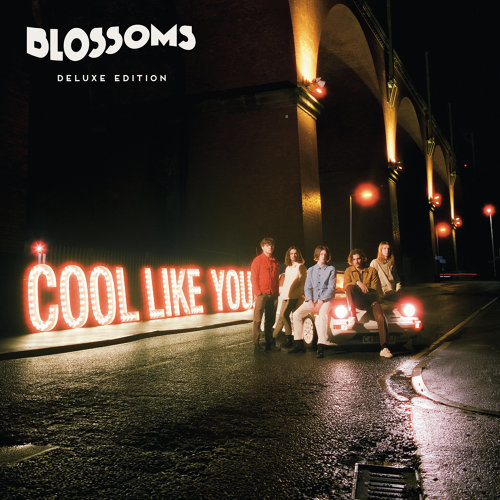 Cool Like You - Deluxe