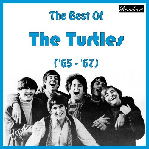 The Best Of The Turtles