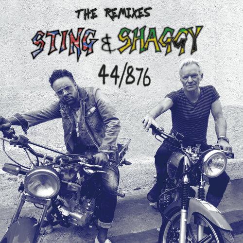 44/876 - The Remixes