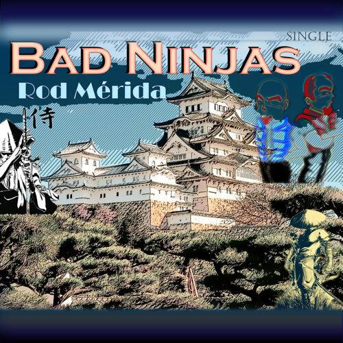 Bad Ninjas