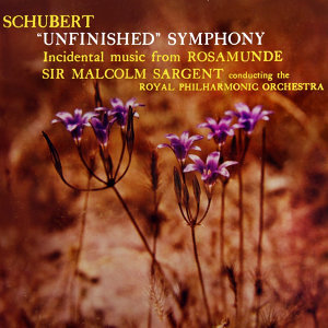 Schubert Unfinished Symphony