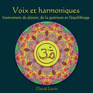 Voix et Harmoniques instrument de Plaisir, de la guérison et L'équilibrage