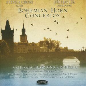 Bohemian Horn Concertos: Havlík, Stich-Punto & Rossetti