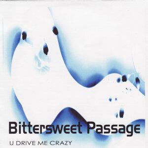 U Drive Me Crazy - EP