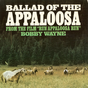 Ballad Of The Appaloosa