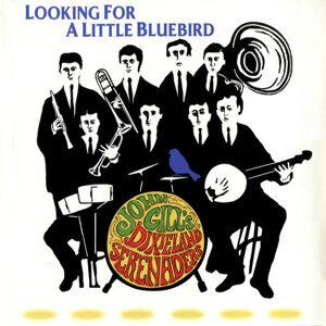 Looking for a Little Bluebird