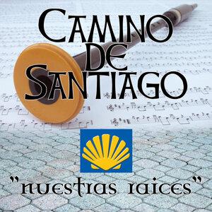 Camino de Santiago. Musica De Galicia