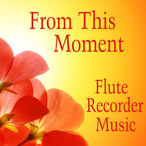 Flute Recorder: From This Moment