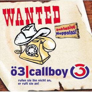 OE3 Callboy Vol.3