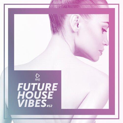 Future House Vibes, Vol. 12
