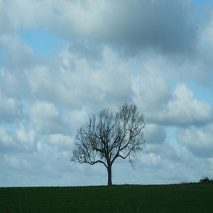 surely ~Where abouts of wind~ -earnestly-