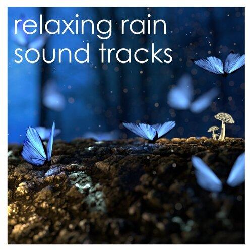 Meditation Zen Master, Rain Sounds Nature Collection, Rain