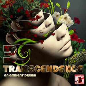 Transcendence 3