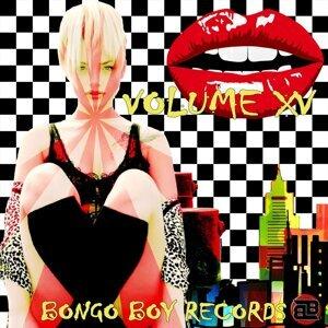 Bongo Boy Records, Vol. XV