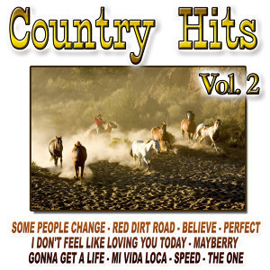 Country Hits Vol.2