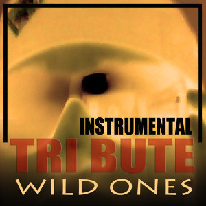 Wild Ones (Flo Rida feat. Sia Instrumental Tribute)
