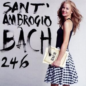 Bach: Cello Suites 246