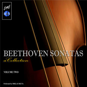 Beethoven Sonatas: A Collection, Vol. 2