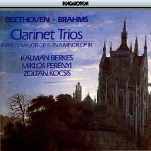 Beethoven, Brahms: Clarinet Trios