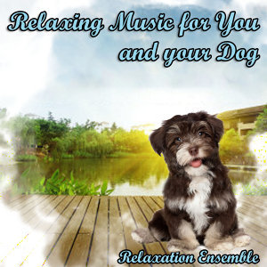 Relaxing Music for You and Your Dog