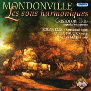 Les Sons Harmoniques