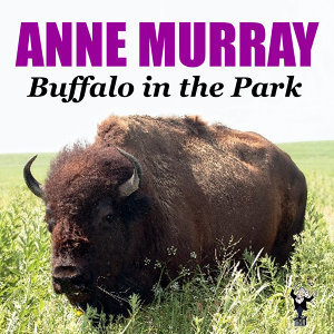 Buffalo in the Park