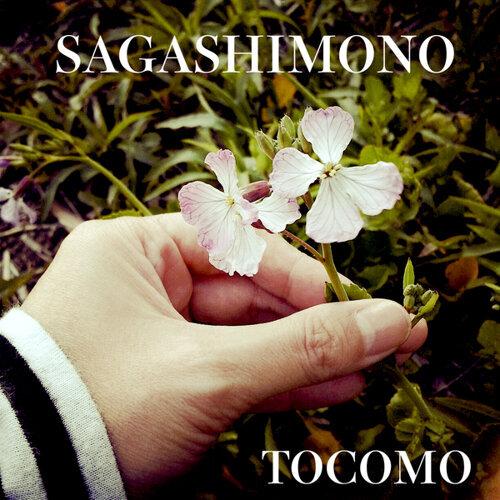 SAGASHIMONO